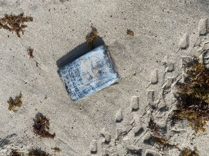Especialista en vida silvestre buscaba nidos de tortugas y halló cocaína por valor de $1.2 millones en Florida