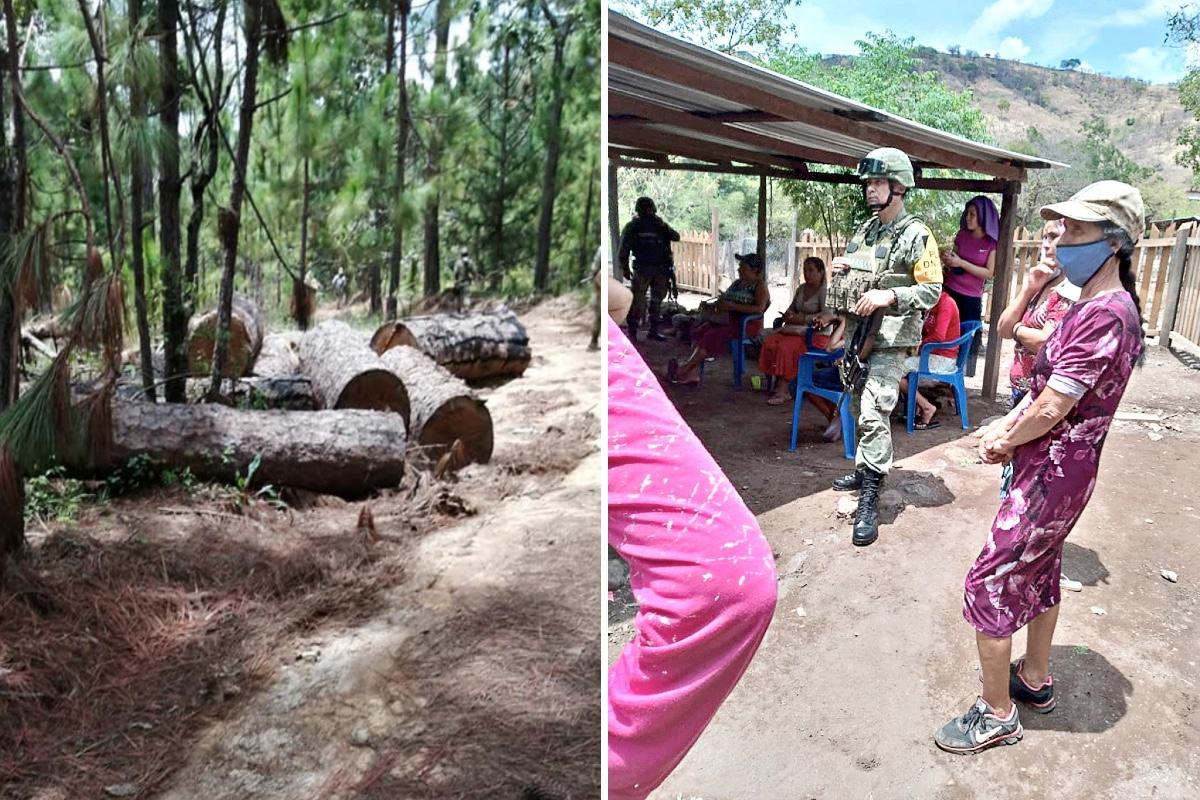 VIDEO: Pueblo defiende su bosque del Cártel de La Familia Michoacana; Sicarios hieren a 2 agentes