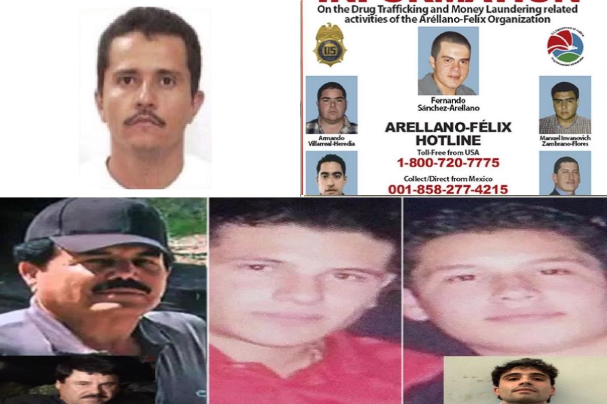 El Mencho/Los ChapitosIván Archivaldo, Alfredo Guzmán Salazar y Ovidio Guzmán López. El Mayo Zambada.