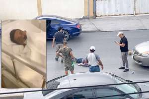 "VIDEO: ""La orden directa era calentar la plaza"", confiesa narco del Cártel del Golfo sobre matanza de inocentes en frontera"