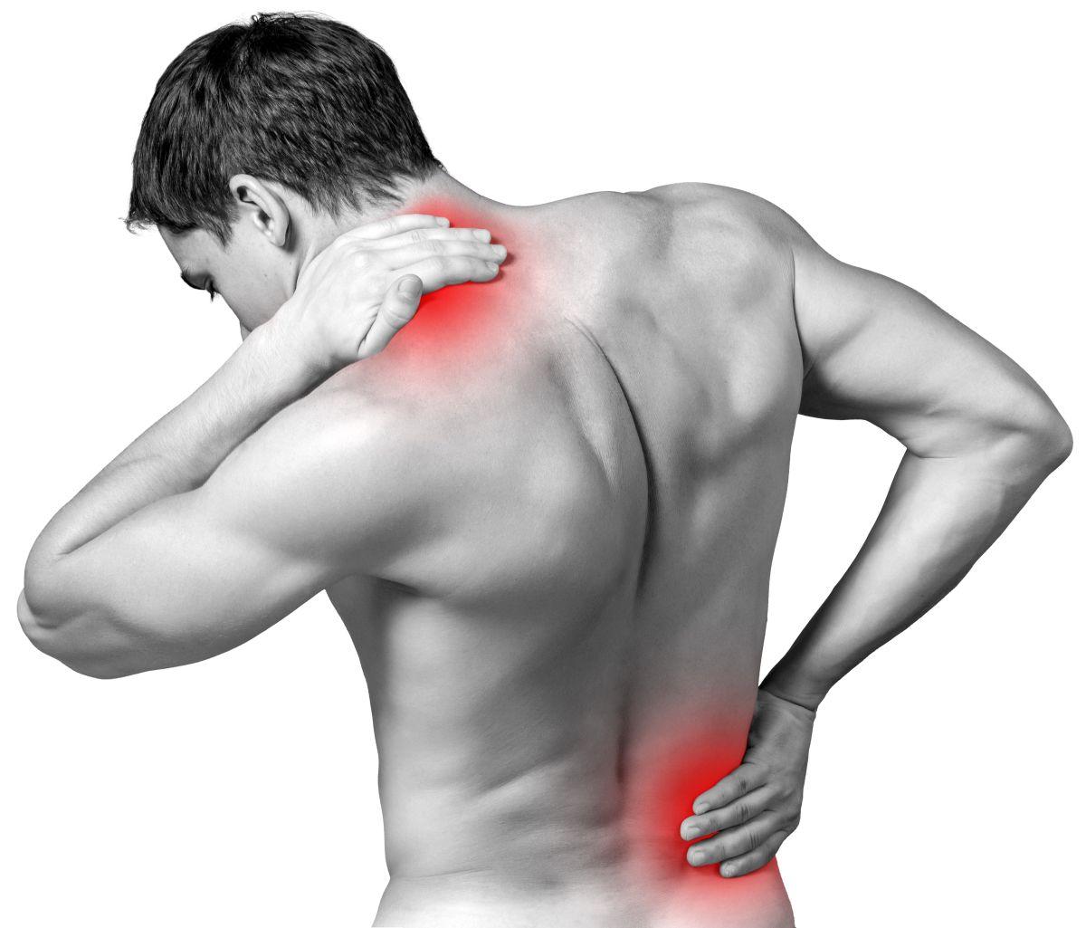 Ya sea por mala postura o sobreesfuerzos, los dolores musculares pueden limitarnos muchísimo