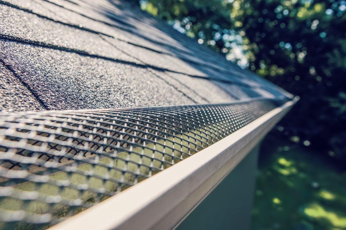 5 opciones de protectores para la canaleta del techo de tu casa