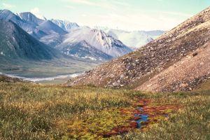 La administración de Biden suspende la perforación de petróleo y gas en un refugio del Ártico