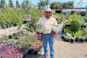 'Puedes tener jardines bellos con poquita agua'