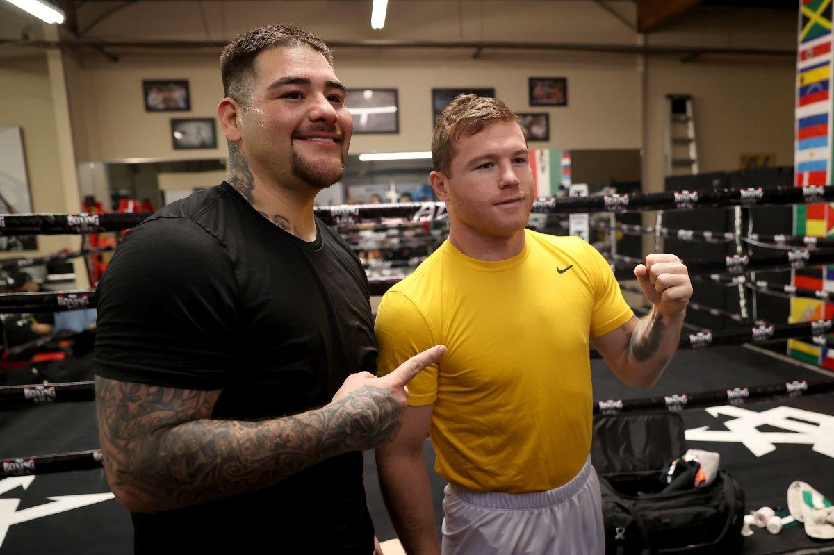 Canelo y Andy Ruiz han entrenado juntos desde hace algunos meses.