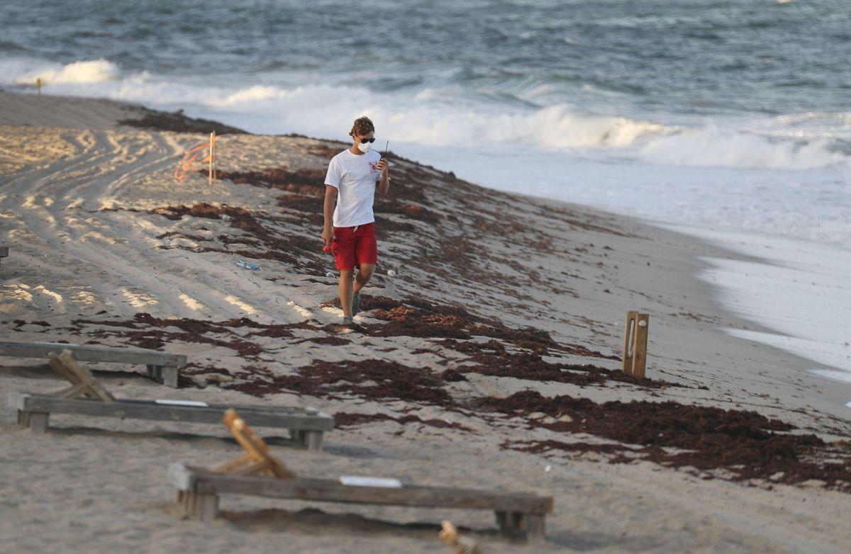 Marea Roja amenaza el verano en la Bahía de Tampa