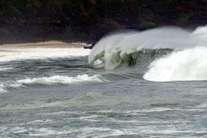 Cancelan alerta de tsunami en Hawái tras fuerte terremoto en Alaska de 8.2 de magnitud