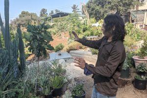 La renta de jardines ofrece una nueva modalidad para pasar el tiempo