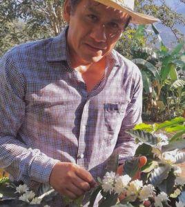 Sir Deaquino Abarca muestra la calidad de la flor de café que se envía a Dubá