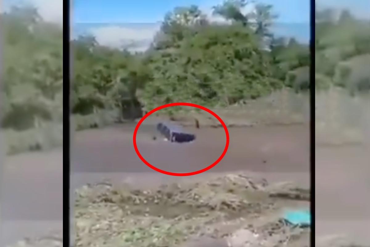 VIDEO: Mueren ahogados 6 presuntos narcos de Blancos de Troya; se los llevó corriente de río