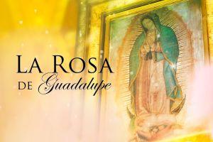 Univision vs Telemundo: 'La Rosa de Guadalupe' vuelve a ser lo más visto del primetime latino