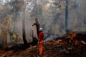Temperaturas sin precedentes y más de un centenar de incendios sofocan el Mediterráneo