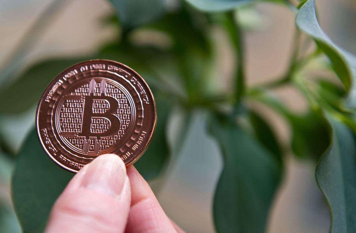 Qué esperar del Bitcoin en los próximos días.