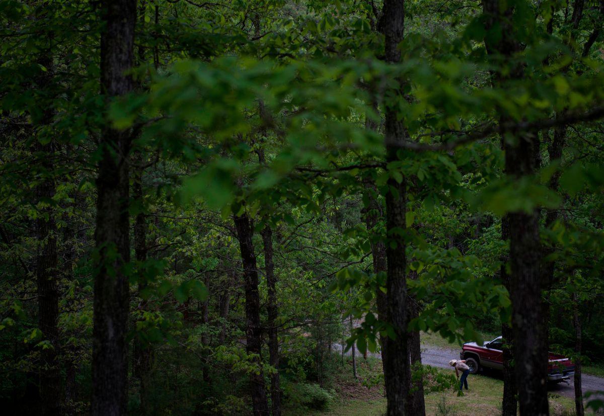Tres hombres murieron en un accidente aéreo en Virginia Occidental.