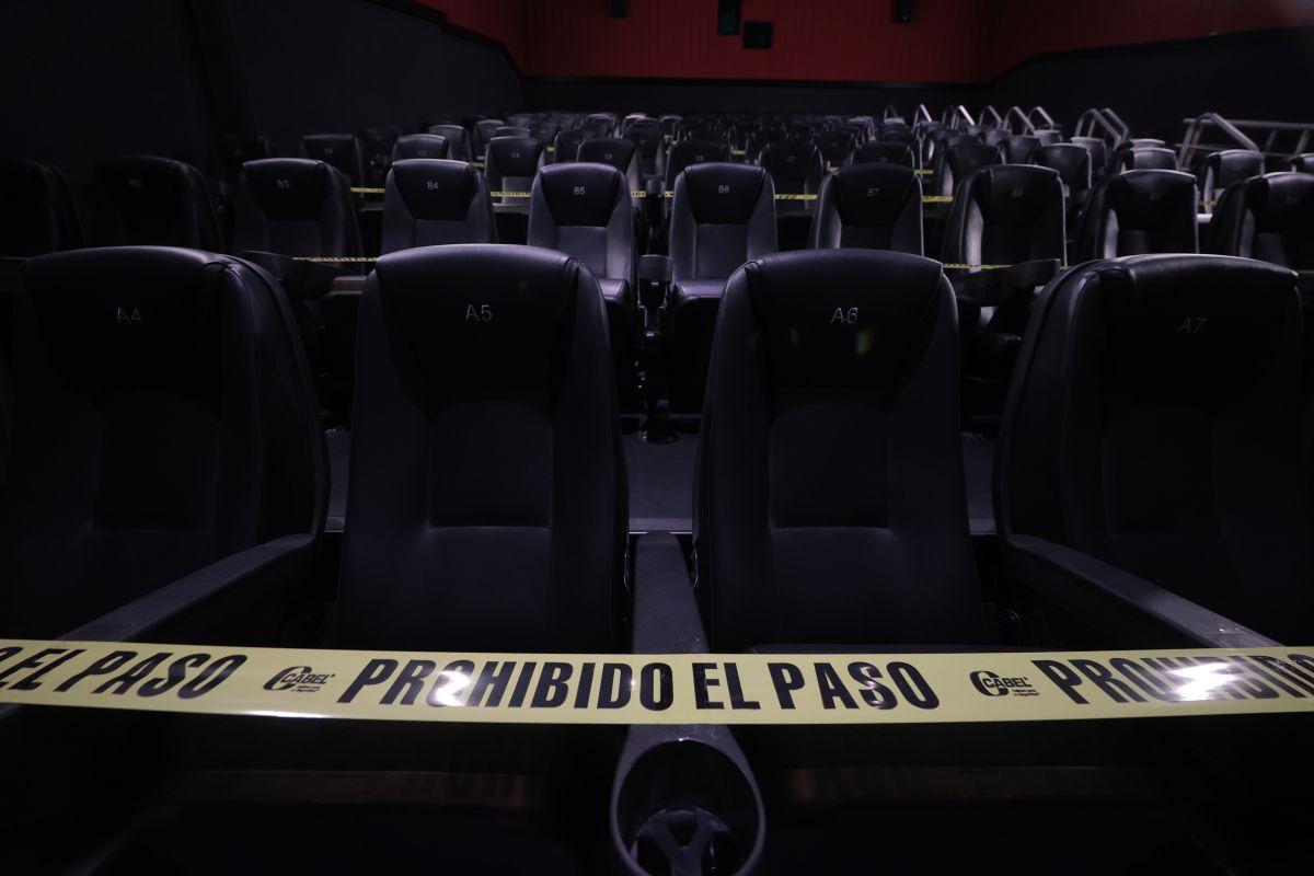 Miranda extravió a su peluche en un cine de Plaza Encuentro Fortuna.