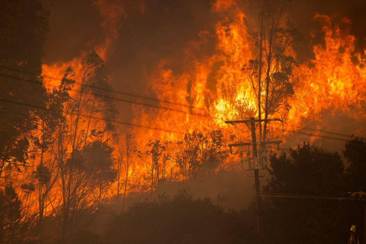 Los fuertes vientos ocasionan que las llamas del incendio Alisal se extiendan rápidamente en Santa Bárbara.