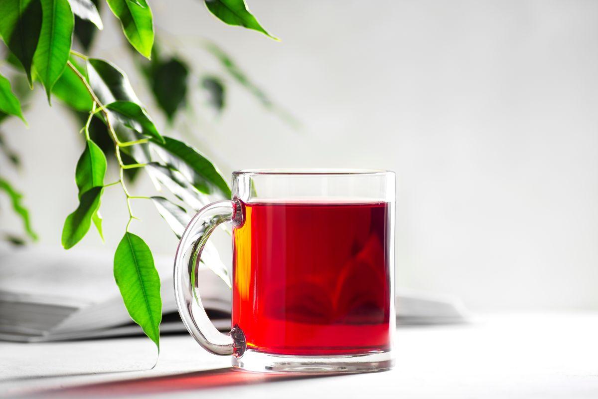 Estos son tés rojos que ayudan a suprimir el apetito para lograr bajar de peso o controlarlo.